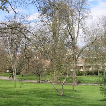 L'essentiel à savoir sur la campagne de dératisation dans les parcs de Vichy