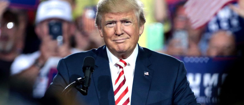 Donald Trump punaises de lit