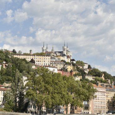 La Métropole de Lyon infestée de punaises de lit
